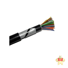 控制电缆ZR-KVVP2-22
