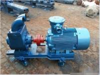 正规生产厂家长期生产100YPB-100滑片泵  甲醇输送叶片泵