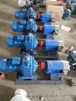 供应3RP36/0.5凸轮泵  高粘度转子泵 糖浆泵