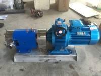 河北供应3-2RP不锈钢凸轮转子泵 食品级304不锈钢转子泵