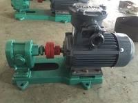 泊头泰盛2CY12-2.5不锈钢齿轮泵|齿轮油泵  直齿齿轮泵压力高