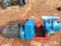 泰盛泵阀销售LC-50-0.6不锈钢罗茨泵 不锈钢罗茨真空泵