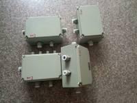 BXJ51防爆接线箱