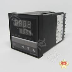 REX-C900PT100
