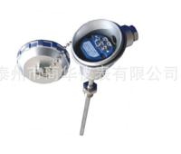 SBWZP-430 一体化热电阻,商华仪表厂家定制 商华仪表陈丽华