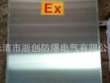 山西DDZ1本安型防爆接线箱南京