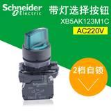 施耐德 22mm带灯选择开关 ZB5AK1233C+ZB5AW0M31C 2段自锁 AC220V