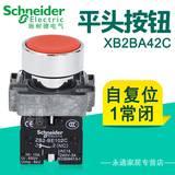 施耐德Schneider 22mm平头按钮开关 XB2BA42C 自复位 1NC  红
