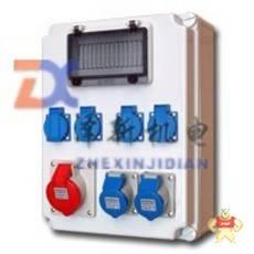 ZX098091