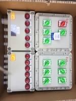 BXX-T 飞航防爆动力检修箱,BXX-2防爆检修箱,BXX-4防爆检修配电箱