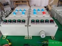 BXM(D)51-DIP粉尘防爆照明(动力)配电箱 安徽创跃防爆电气有限公司