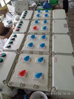 BXM(D)防爆配电箱 安徽创跃防爆电气有限公司