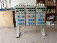DSG防爆动力配电柜 安徽创跃防爆电气有限公司