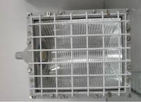 BAT51防爆泛光灯BAT51带防雨罩