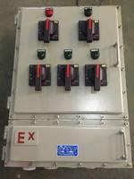 防爆控制箱300 300隔爆箱150高其它防爆箱可订做防爆箱子厂家直销