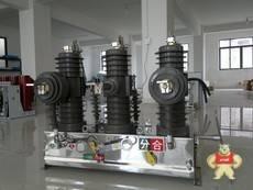 ZW43-12/630-20