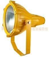 BTC6210防爆投光灯BTC6210-J400W 深圳华荣防爆