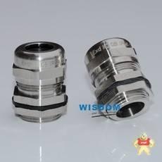 WYD-FT10-PG11-SS
