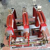 FZRN21-24D/125-31.5真空负荷开关熔断组合电器 24kv真空负荷开关