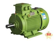 YE3-200L2-2-37KW