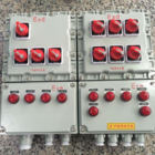 BXM51-防爆照明动力配电箱带总开关