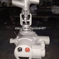 J961Y-250DN15、DN20调节型电动截止阀