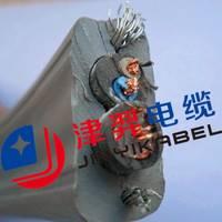 批发 电梯专用电缆生产厂家TVVB2G75-5+2X1.0 电梯视频监控线