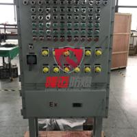 BXD51-10/12K防爆动力配电箱