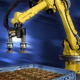 大兴区二手铝点焊机器人价格 挂车喷涂机器人