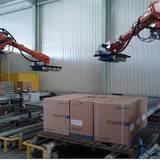 静海县进口点焊机器人编程 小型机械手