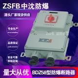 中沈BDZ58系列防爆配电箱价格防爆配电箱厂家防爆断路器