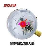 AKLT-YNXC100耐震电接点压力表_耐震充硅油压力表_径向电接点压力表