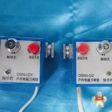 DSN3-DZ
