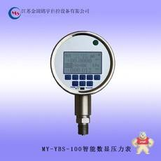MY-YBS-100