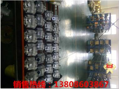 驻马店R8.3 柱塞泵,齿轮泵,液压站