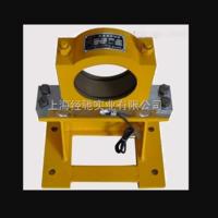 QZX-WZ-3.2轴承座式起重量限制器