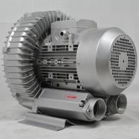 双叶轮漩涡式气泵