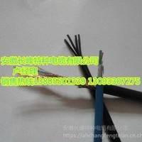 DJYVP3R12*2*0.75聚乙烯绝缘对绞铝/塑复合带总屏蔽聚氯乙烯护套电子计算机控制软电缆长峰电缆