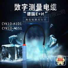CYK10