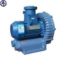 防爆旋涡气泵 防爆气泵