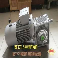 NMRV090-100-F-2.2KW-4P