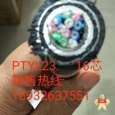PTYL2344