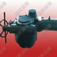 扬修电力DZW-250直行程电动执行器