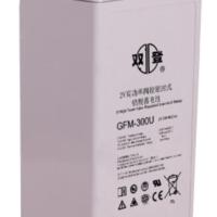 双登蓄电池 蓄电池批发 GFM-300U蓄电池 UPS蓄电池