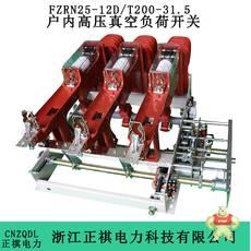 FZRN25-12D/T200-31.5
