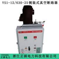 侧装式真空断路器VS1-12厂家直销