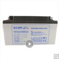 LEOCH 理士 DJM1265 UPS不间断电源 12V65AH EPS电源铅酸蓄电池