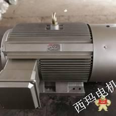 YE2-355L1-6
