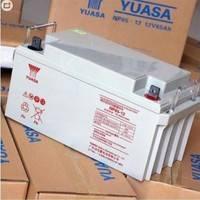 电子能源系统 汤浅蓄电池NP65-12 UPS免维护蓄电池质保三年12V65AH防伪正品