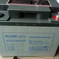 理士LEOCH蓄电池 DJM1238 12V38AH UPS电源 高压房直流屏电池